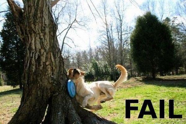 Fail: 45+ poze amuzante - Poza 6