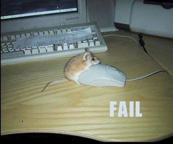 Fail: 45+ poze amuzante - Poza 13