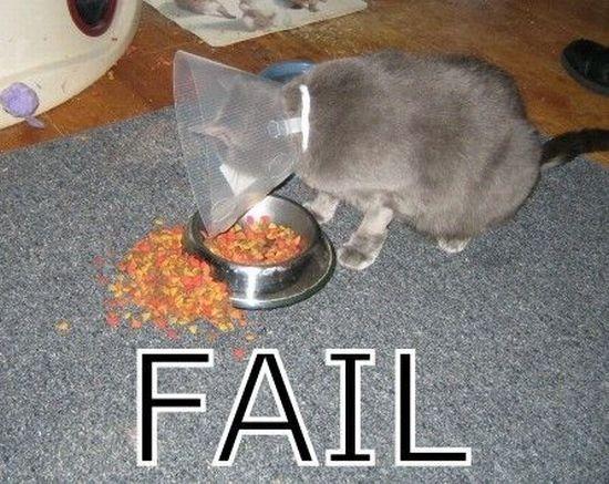 Fail: 45+ poze amuzante - Poza 35