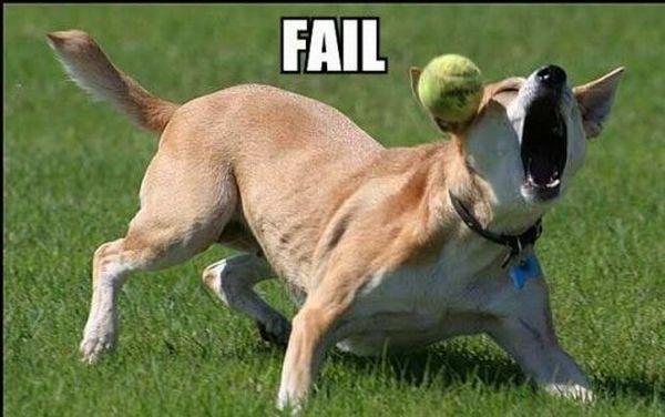 Fail: 45+ poze amuzante - Poza 41