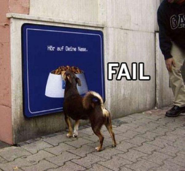 Fail: 50 de poze de tot rasul - Poza 50