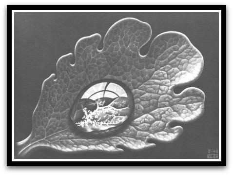 30 desene ciudate - M.C. Escher - Poza 20