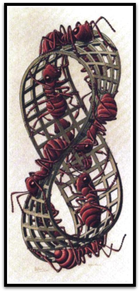 30 desene ciudate - M.C. Escher - Poza 26