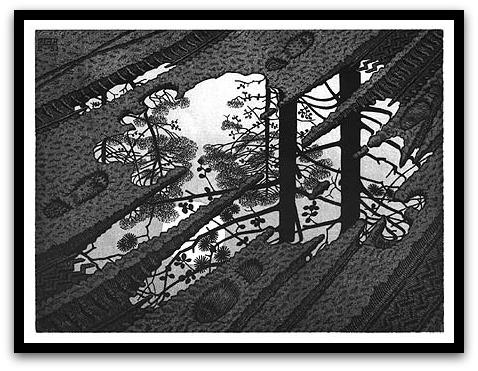 30 desene ciudate - M.C. Escher - Poza 28