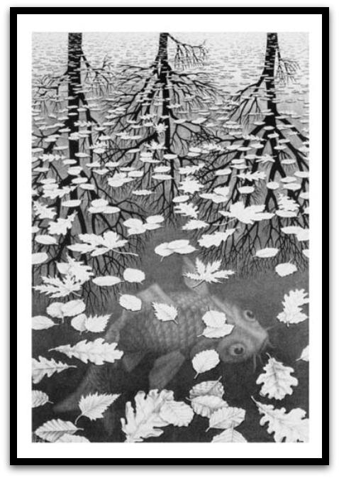 30 desene ciudate - M.C. Escher - Poza 10