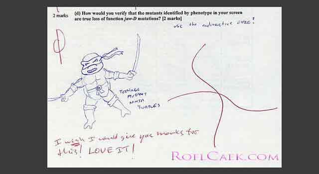 Funny: rezolvari ingenioase la examene - Poza 18