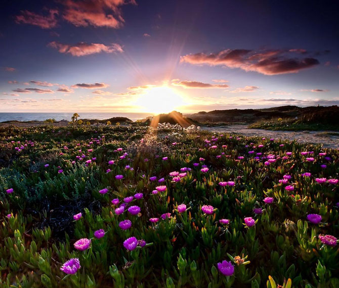 20 de fotografii superbe de Paulo Flop - Poza 1