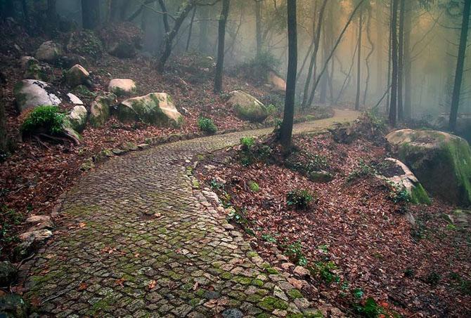 20 de fotografii superbe de Paulo Flop - Poza 11