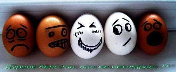 Funny: Arta din mancare! - Poza 14