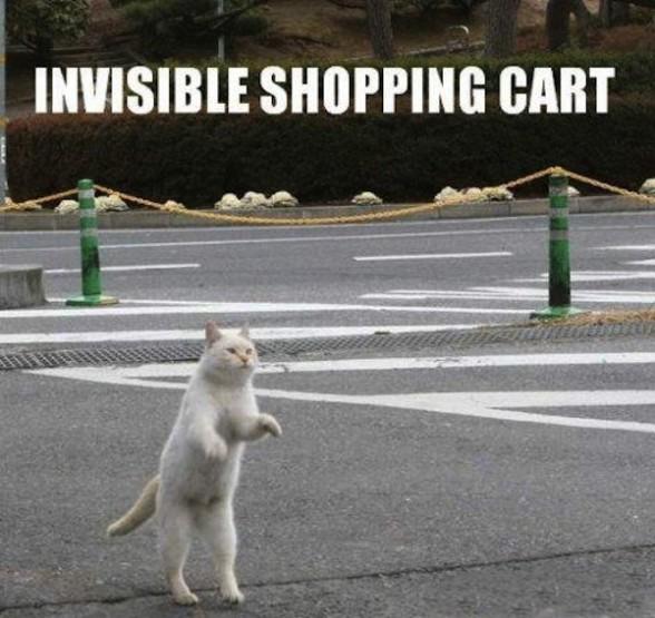 40 de obiecte invizibile fotografiate - Poza 12