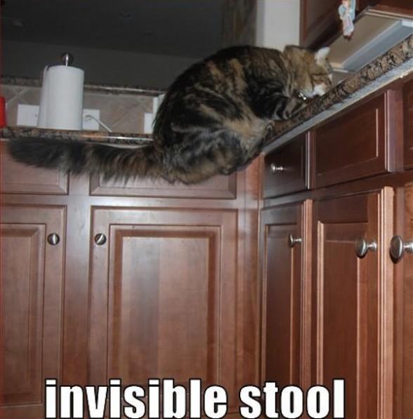 40 de obiecte invizibile fotografiate - Poza 17