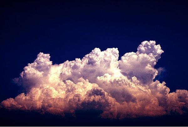 Norii in 25 de poze superbe - Poza 14