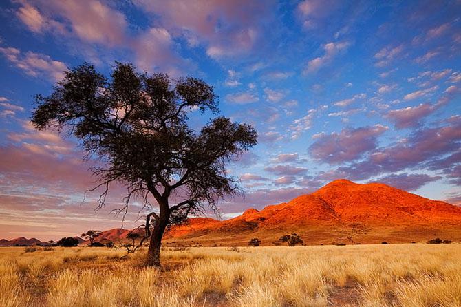 24 de fotografii minunate de Hougaard Malan - Poza 20
