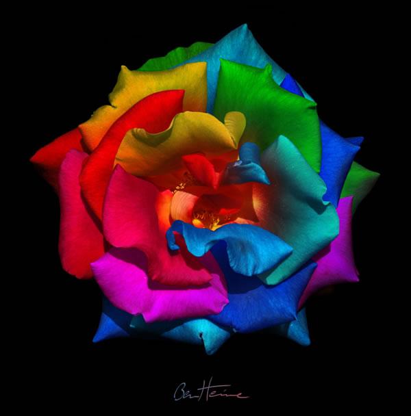 Inspiratie pentru week-end: Ben Heine, un artist desavarsit - Poza 22