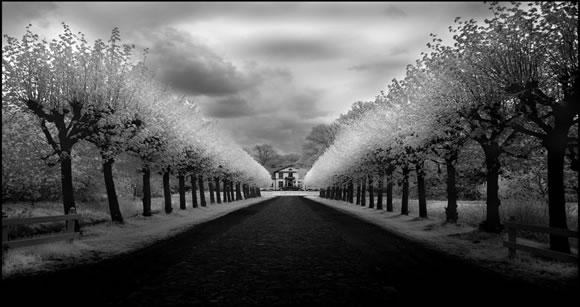 22 de fotografii in infrarosu! - Poza 8