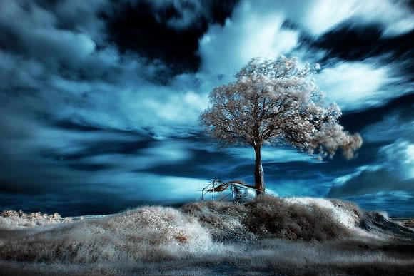 22 de fotografii in infrarosu! - Poza 9