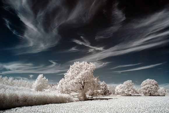 22 de fotografii in infrarosu! - Poza 10