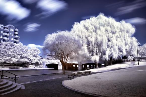 22 de fotografii in infrarosu! - Poza 15