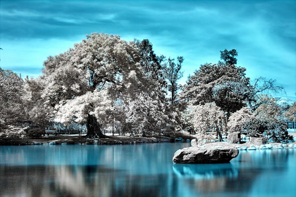 22 de fotografii in infrarosu! - Poza 18