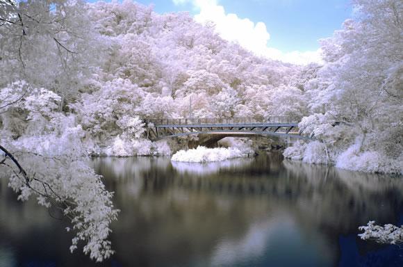 22 de fotografii in infrarosu! - Poza 22