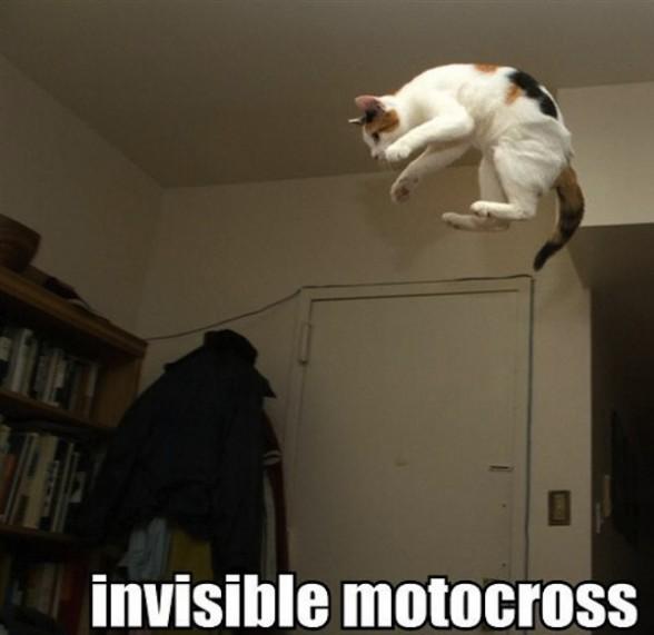 40 de obiecte invizibile fotografiate - Poza 30