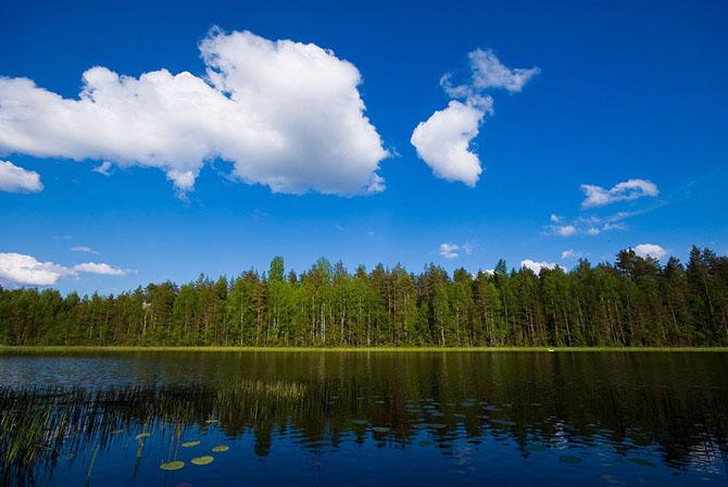 Natura in 25 de fotografii extraordinare - Poza 11