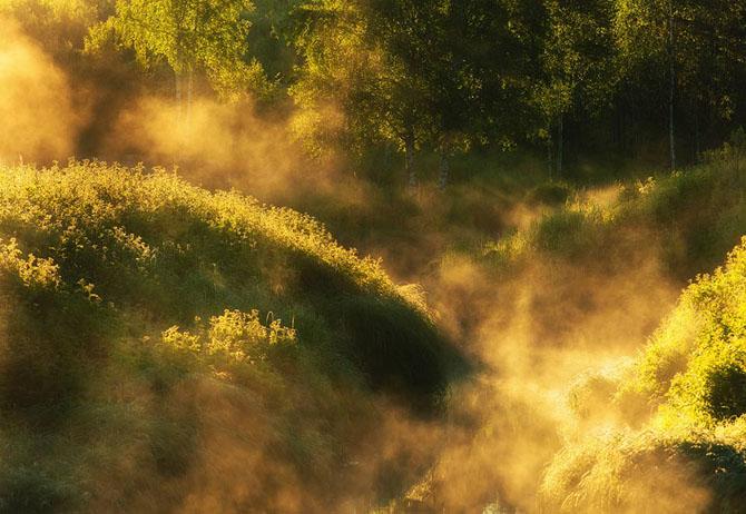 Natura in 25 de fotografii extraordinare - Poza 12