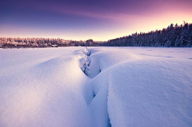 Natura in 25 de fotografii extraordinare - Poza 7