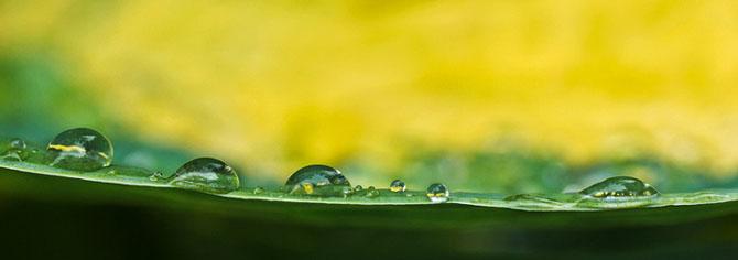 25 de poze cu natura: John Fan - Poza 17