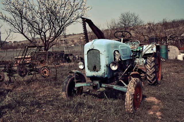 Foto - Art by Borbala Suto-Nagy - Poza 14