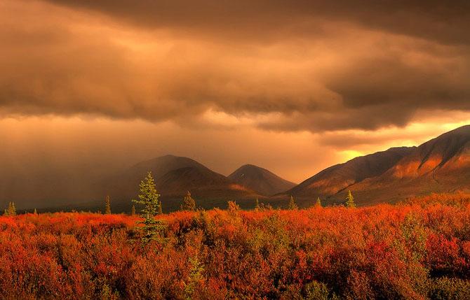 23 de peisaje grozave de Kevin McNeal - Poza 18