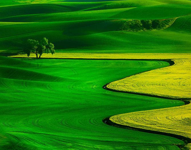 23 de peisaje grozave de Kevin McNeal - Poza 3