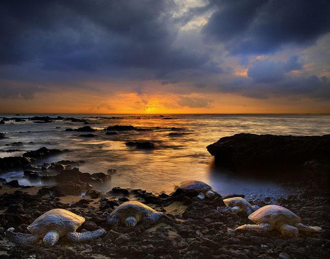 23 de peisaje grozave de Kevin McNeal - Poza 4