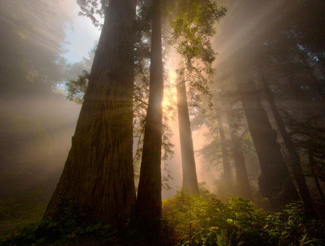 23 de peisaje grozave de Kevin McNeal - Poza 7