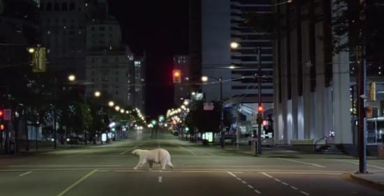 Nissan Leaf: Ursul polar - Poza 2