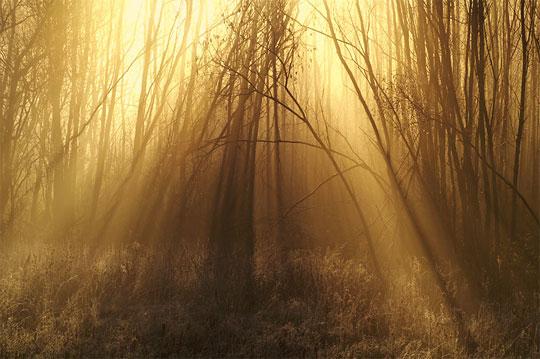 Lumina naturala in 30 de exemple magice - Poza 18