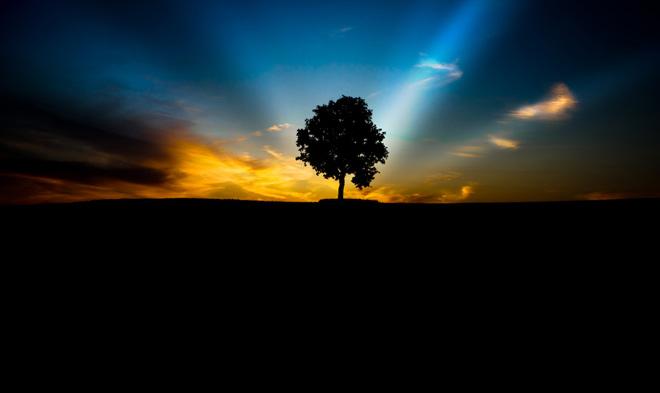 Cand lumina vine din spate: 30 de fotografii grozave! - Poza 16