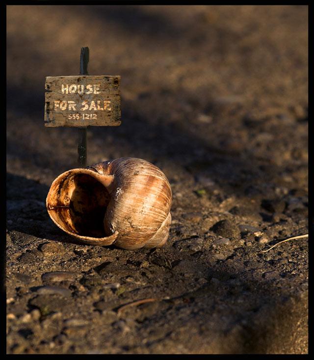 Casa de vanzare - Poza 1