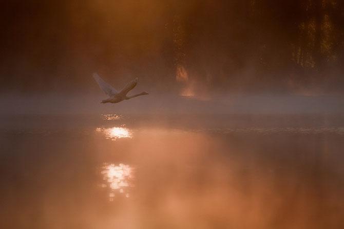 32 de fotografii minunate de Mikko Lagerstedt - Poza 14