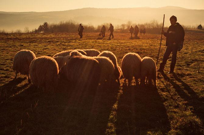 Un fotograf strain in Romania - Poza 7