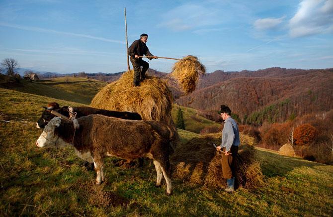 Un fotograf strain in Romania - Poza 6