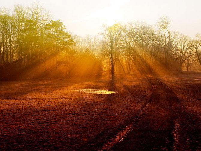20 de fotografii incantatoare de Michal Mierzejewski - Poza 13