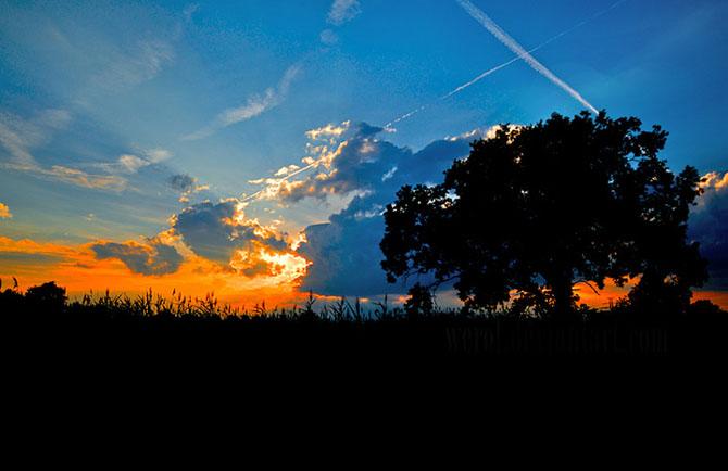20 de fotografii incantatoare de Michal Mierzejewski - Poza 19