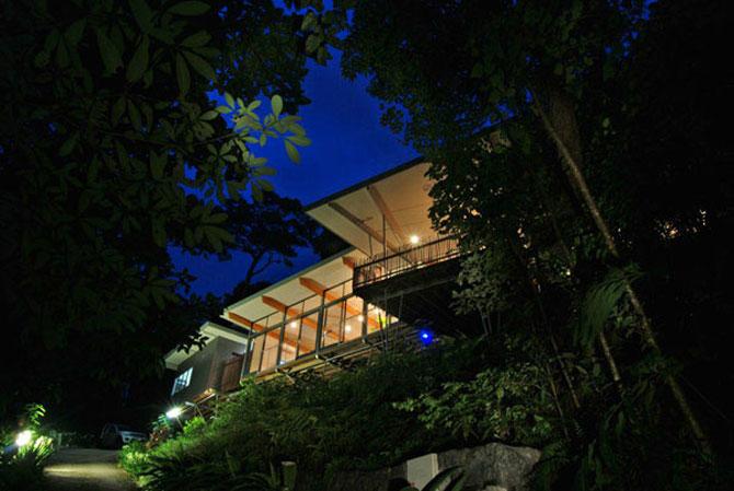 Casa in copac, de mmp Architects - Poza 2