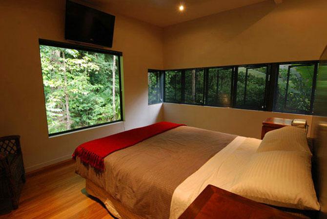 Casa in copac, de mmp Architects - Poza 8