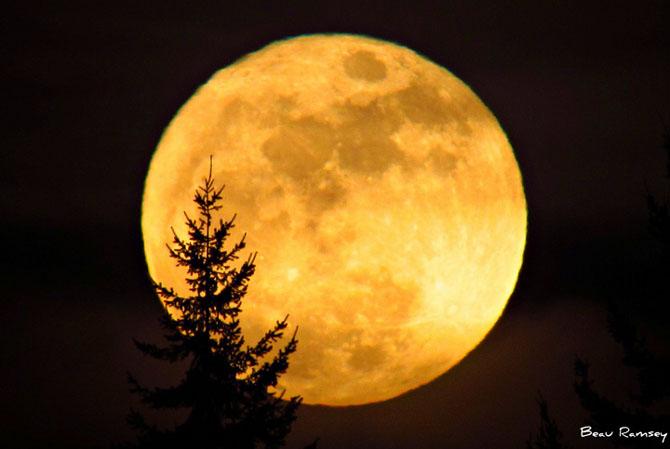 26 de fotografii superbe cu Luna - Poza 10