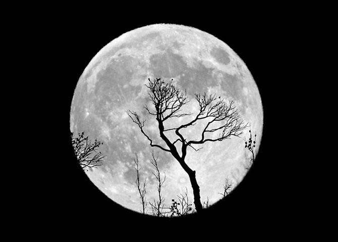 26 de fotografii superbe cu Luna - Poza 22