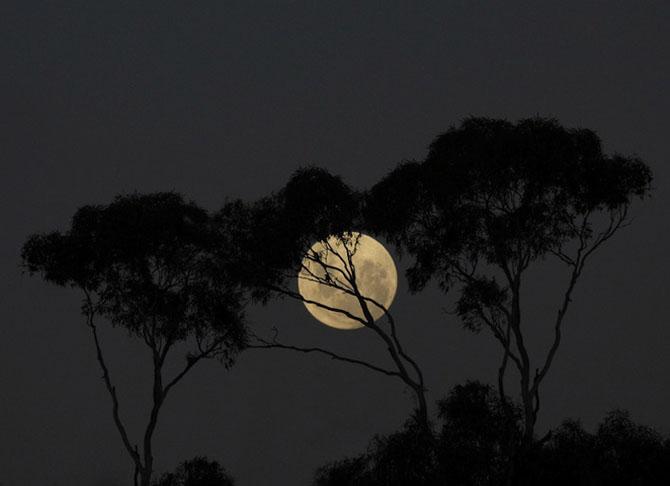 26 de fotografii superbe cu Luna - Poza 9