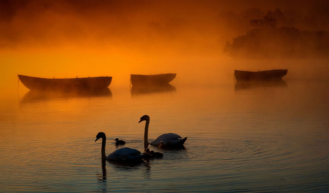 23 de fotografii superbe de David Mould - Poza 13