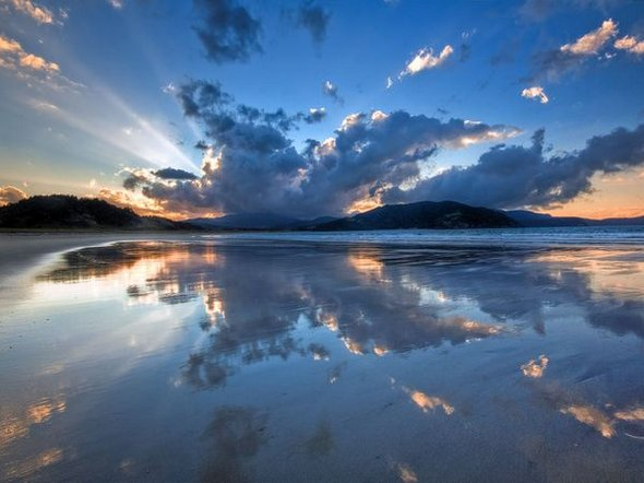 De vis: 35 de fotografii impresionante - Poza 27